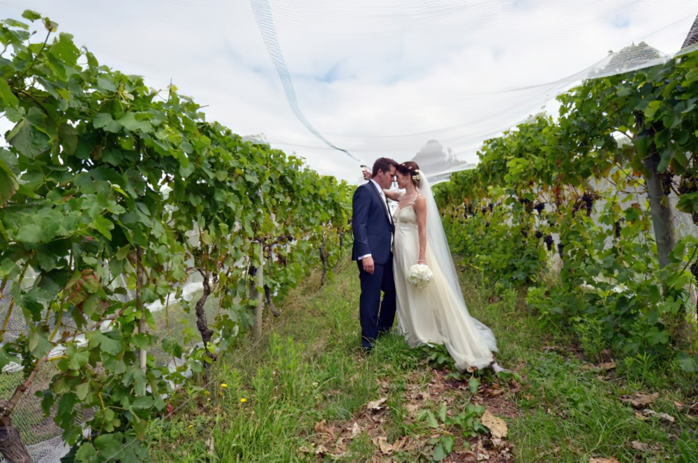 6 Questions To Ask Wineries When Planning Your Wedding Uncorked The