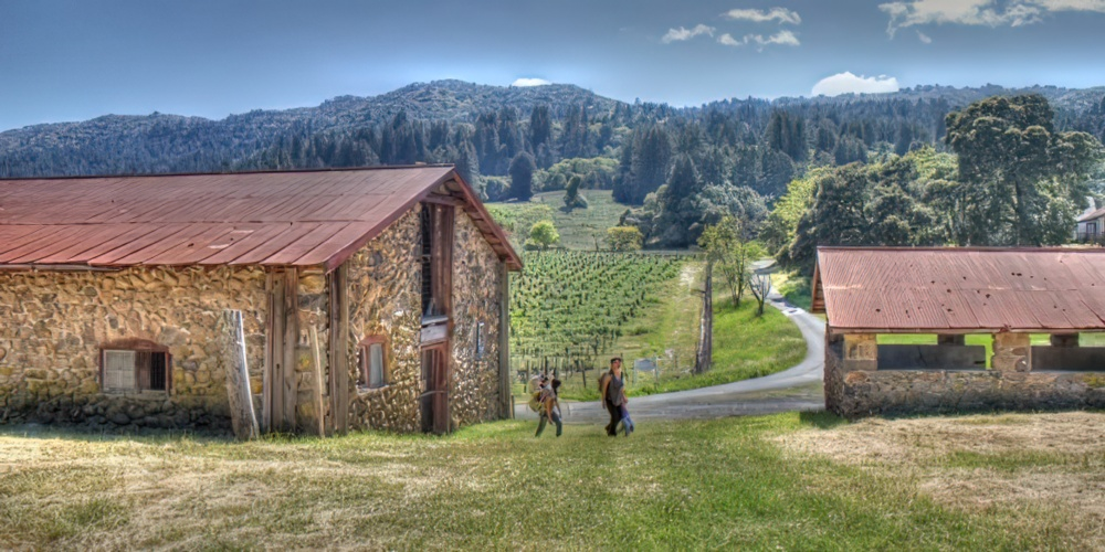 4 Sonoma Hiking Trails For History Lovers And Eco Buffs