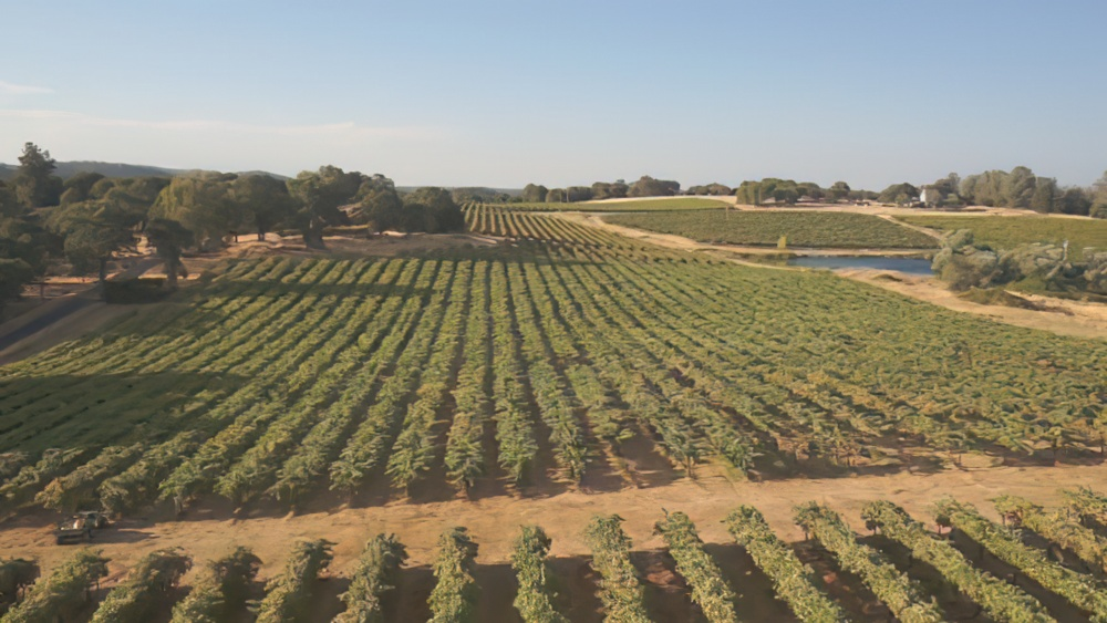 The History Of Hwy 20 Winery S Vines Amp Vintages Wine Club Spotlight Uncorked The Blog