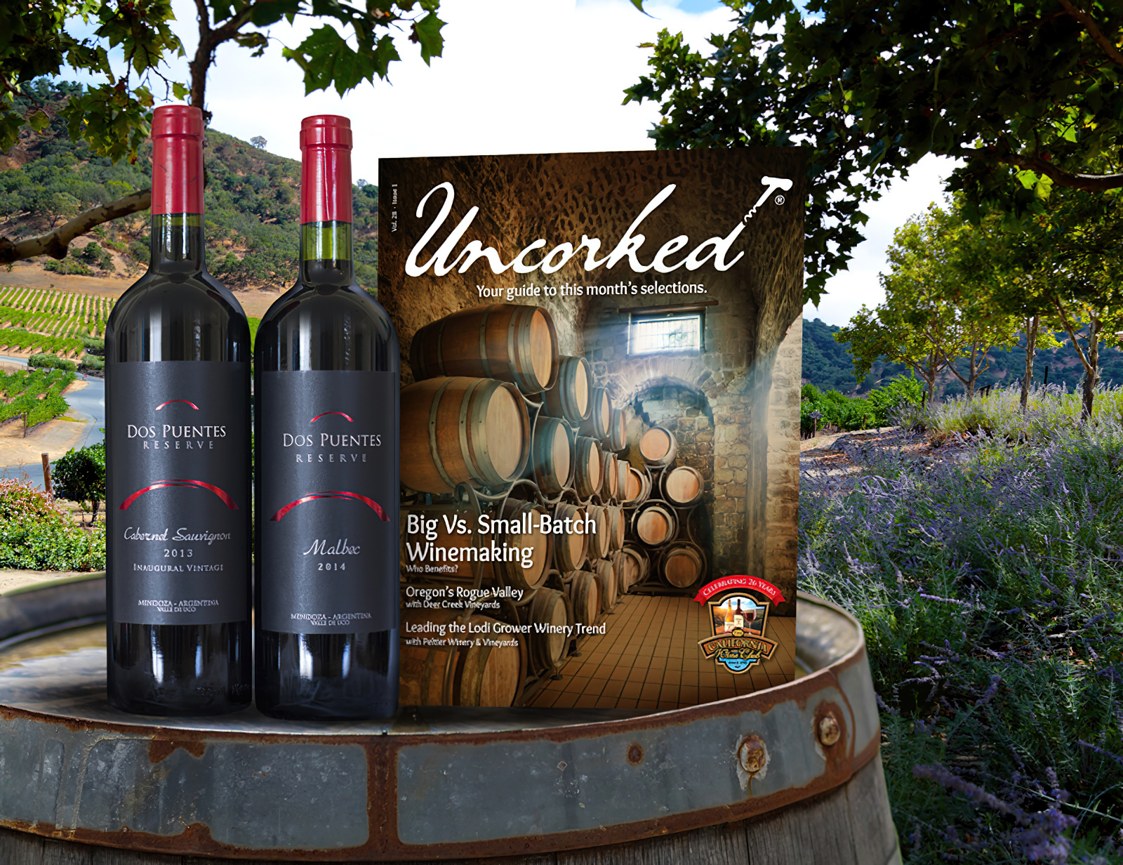 California Wine Club 6-Month International Red Wine Gift Membership plus size,